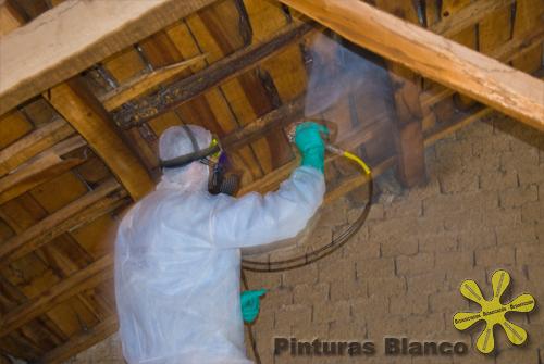 Eliminar polilla y hongo en la madera for Como tratar la madera